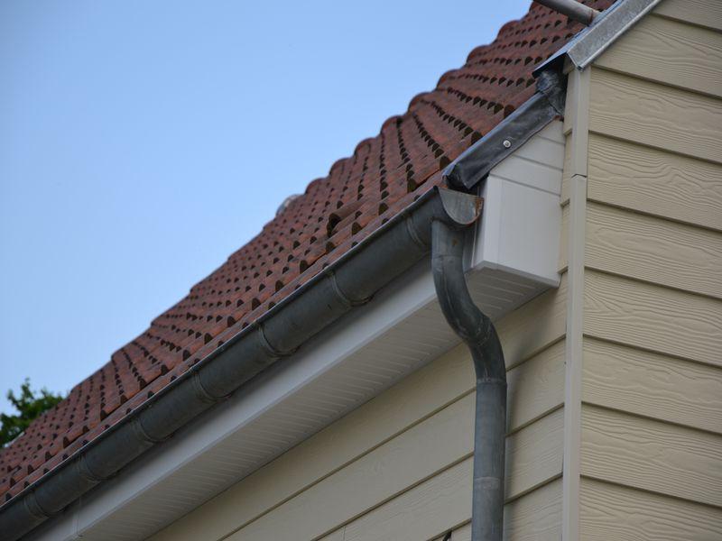 Comment poser cache moineau pvc maison design - Comment effrayer les moineaux ...